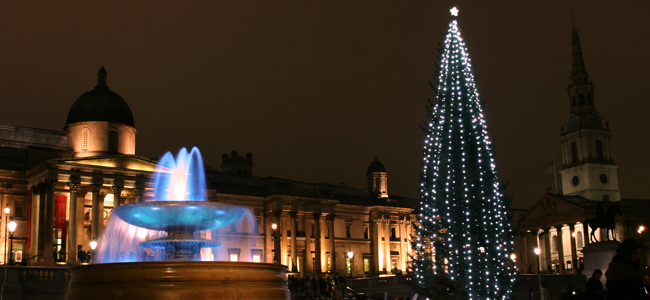 The Trafalgar Square Christmas tree - Photo by Thea Gunnes