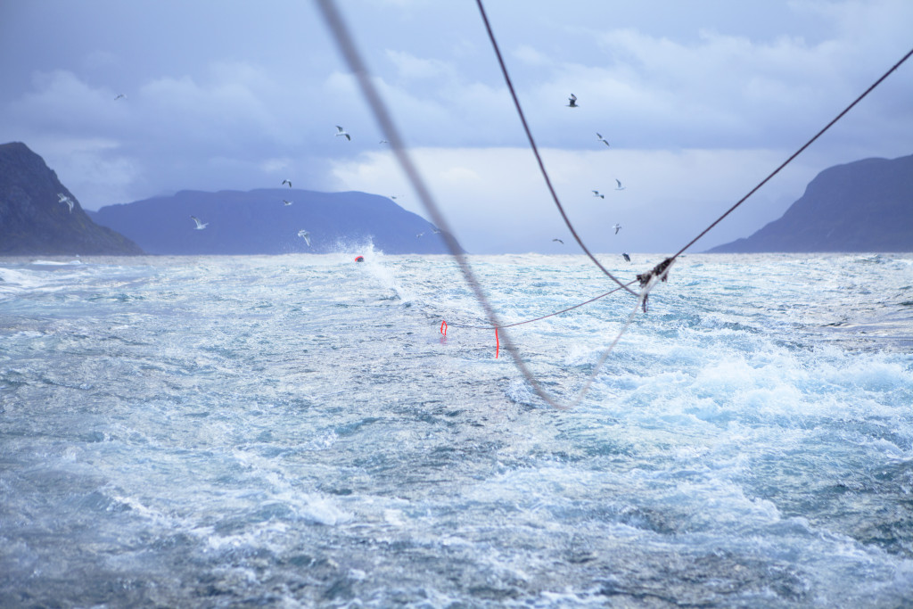 Norway is developing a system that allows the regulation of the fishing industry according to the limits of nature