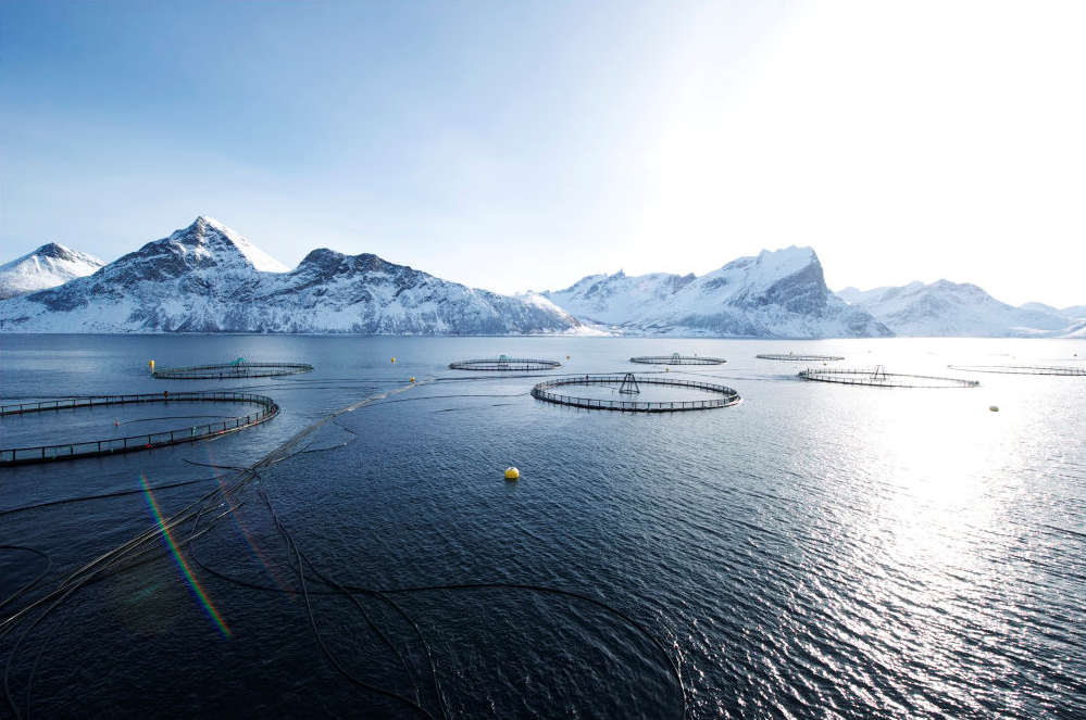 Aquaculture farms in Norway