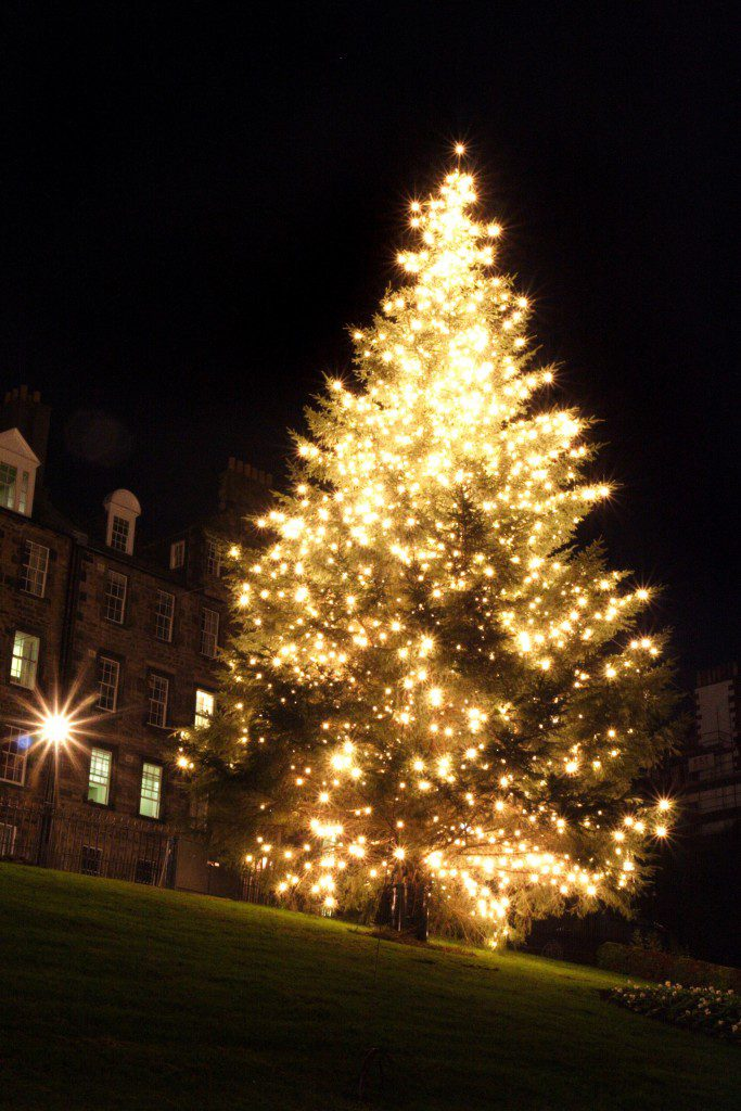 The Norwegian Christmas Tree at The Mound in Edinburgh