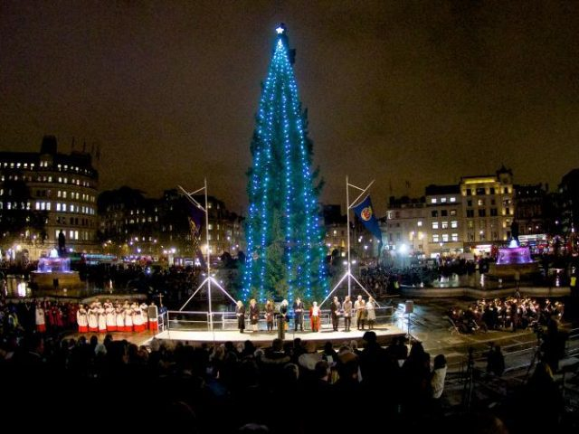 Londons Christmas Tree In Trafalgar Square Is Donated Each Year By Which Country.Norwegian Christmas Trees In The Uk Norwegian Arts